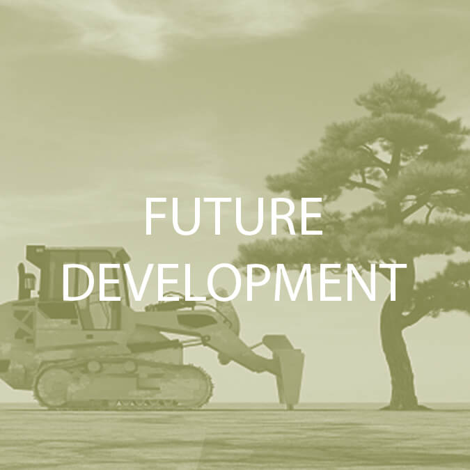 Future Development